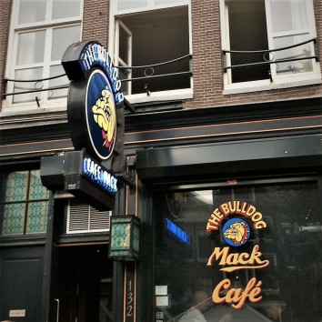 amsterdam - bulldog cafe